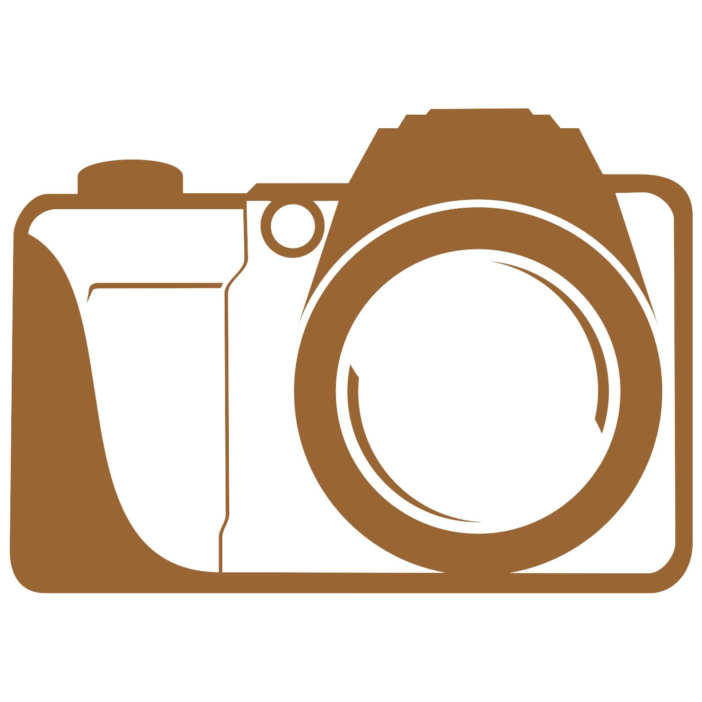 Camera vector free download images for Camera gratis
