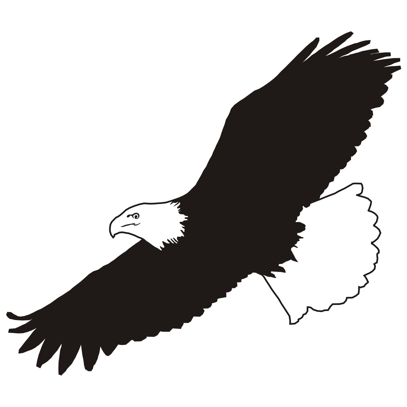 Flying Eagle Clipart Black And White | www.pixshark.com ...