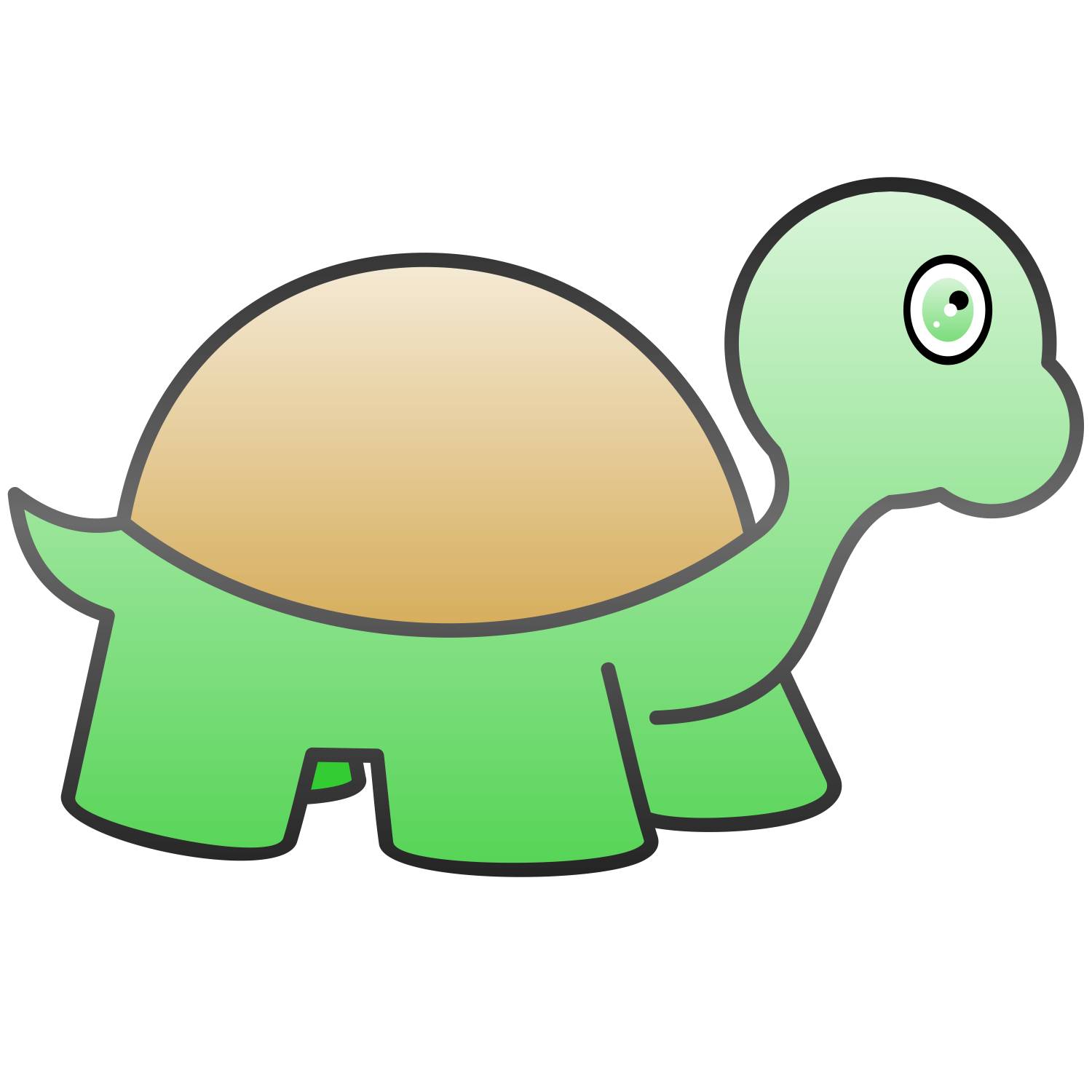 vector for free use turtle vector