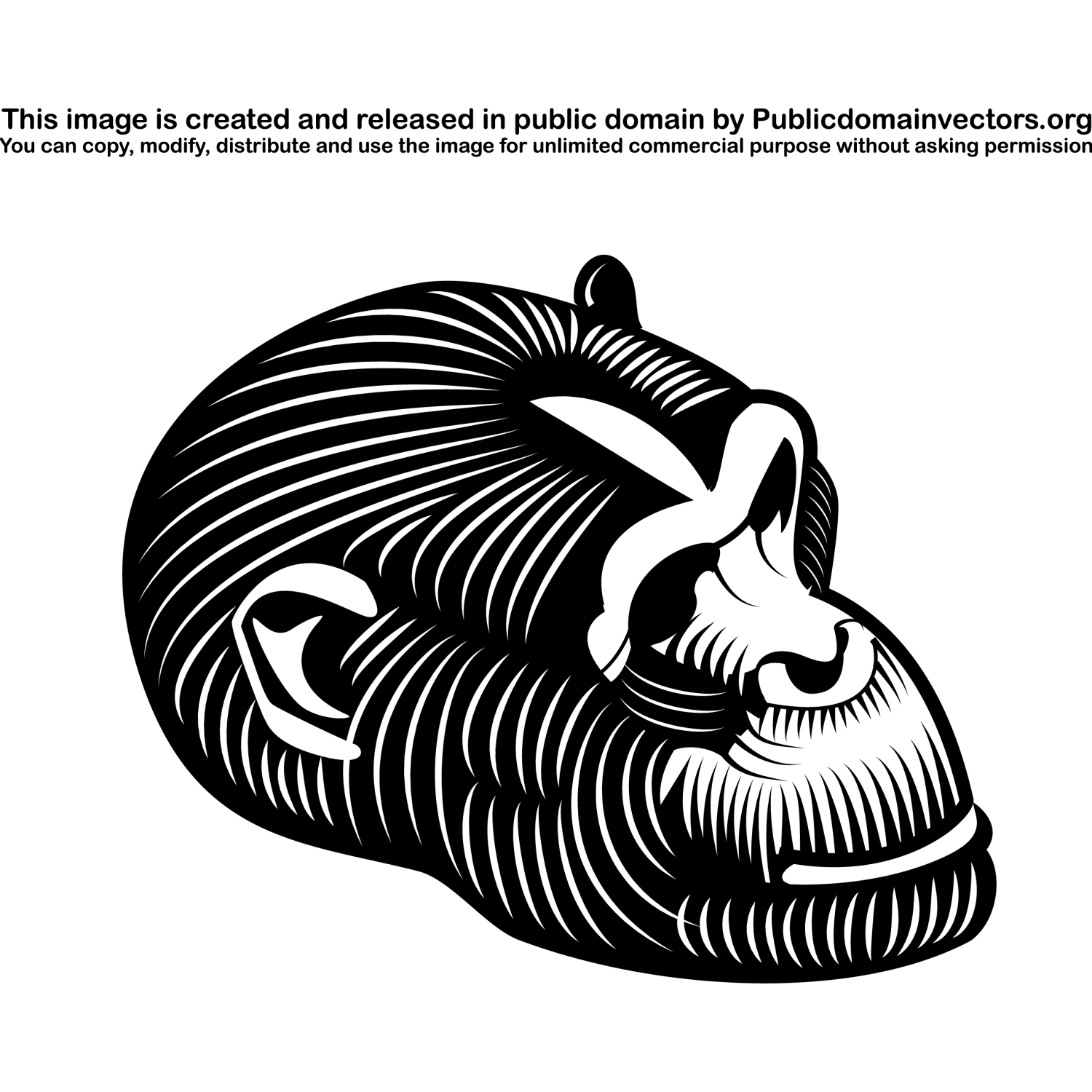 Black and white vector illustration of a gorilla's head