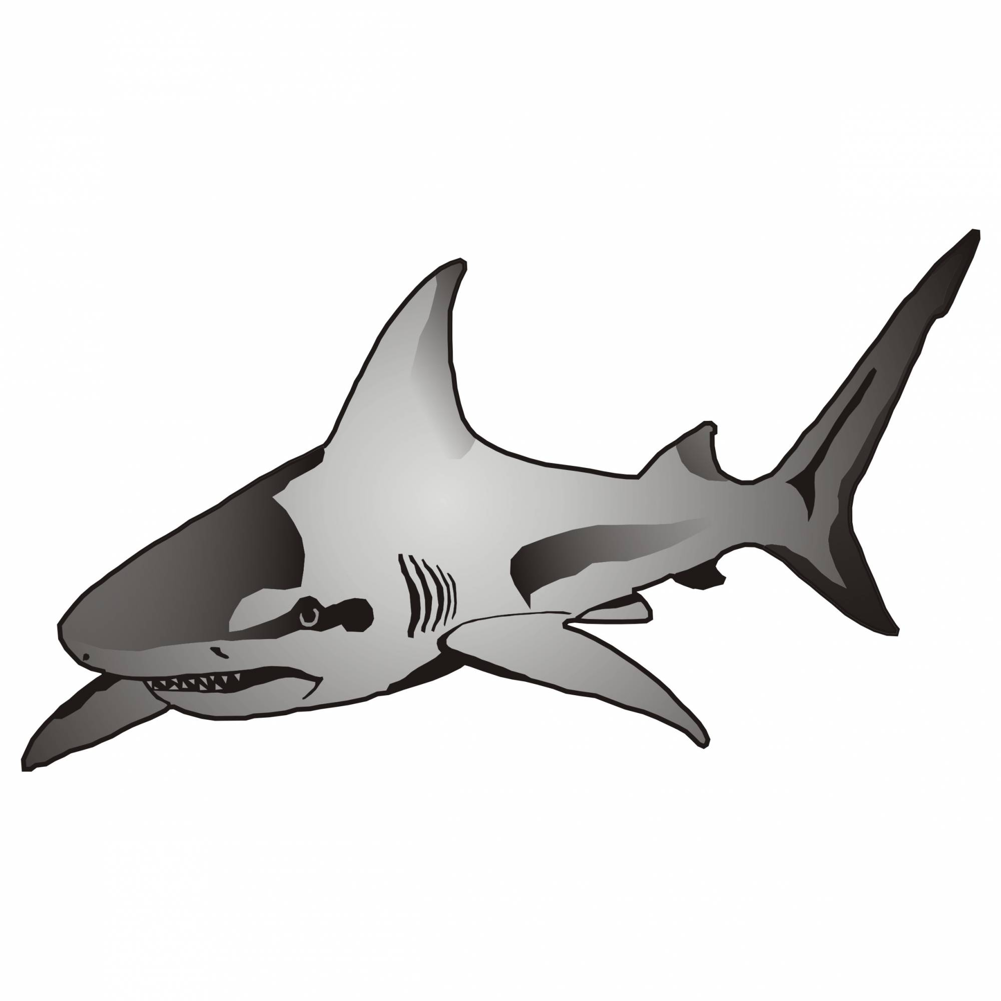 Vector for free use: Shark - 111.4KB