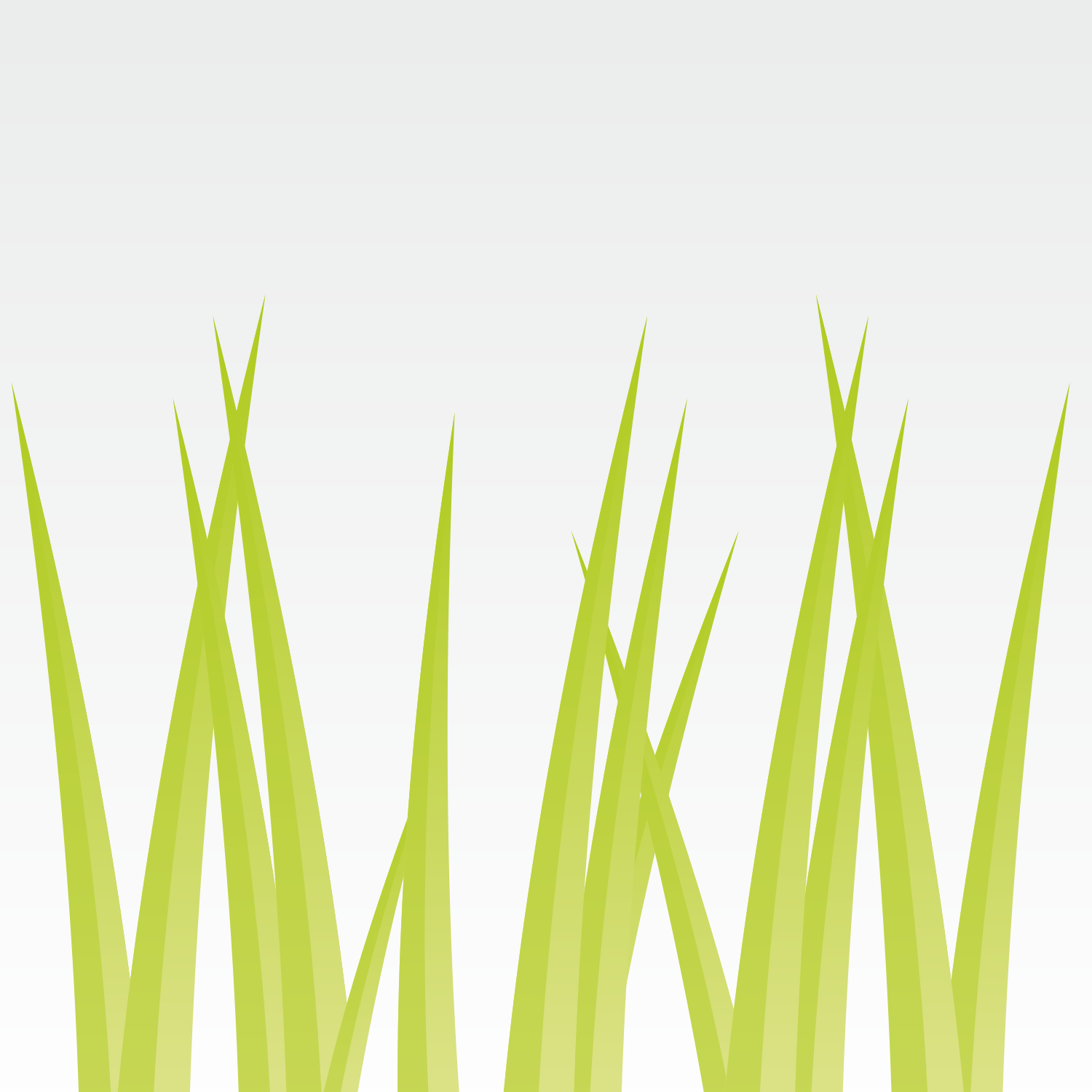 Green grass on grey background.