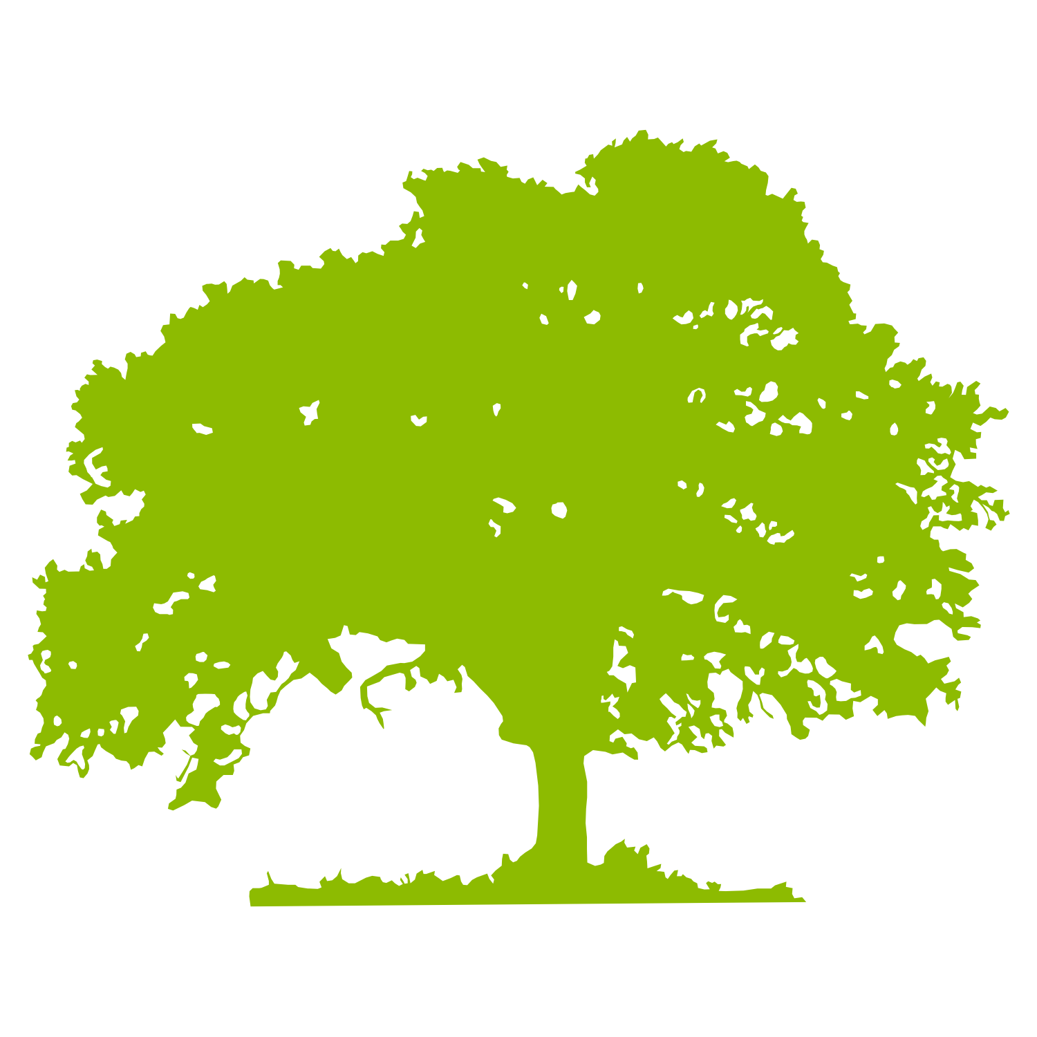 Green tree silhouette. Vector Illustration.