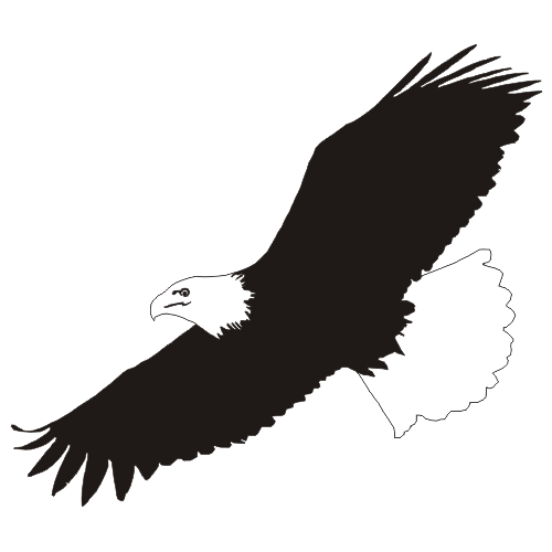 Go Back > Gallery For > Flying Eagle Clip Art