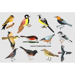 Realistic Birds