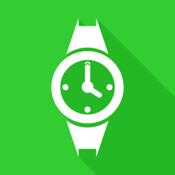 Flat watch
